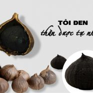doi-den-co-don-duy-thien-250g-3-min